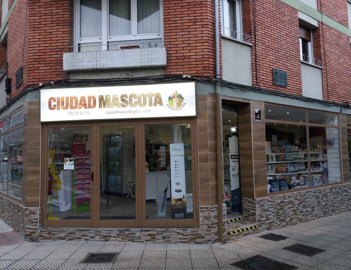 Reforma de local en Oviedo